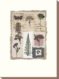 Souvenirs IV Stretched Canvas Print by Julie Lavender