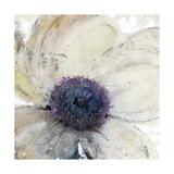Flower Flow II Giclée-Premiumdruck von Tim O'toole