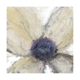 Flower Flow I Giclée-Premiumdruck von Tim O'toole
