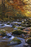 Autumn on Little River Photographic Print by Danny Head