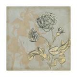 Shadow Floral IV Premium Giclee Print by Megan Meagher