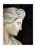 Aphrodite Premium Giclee Print by Ethan Harper