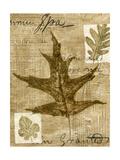 Leaf Collage II Plakat af Kate Archie