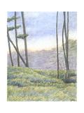 Tranquil Horizon II Prints by Virginia A. Roper