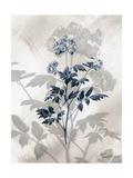 Indigo Bloom II Art par John Butler