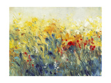Flowers Sway I Premium Giclee Print by Tim O'toole