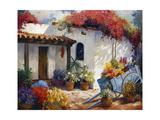 Casa Paloma Poster by Carolyne Hawley