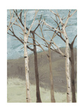 Blue Birches II Premium Giclee Print by Jade Reynolds