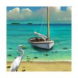 Sailing Serenity IV Posters by Rick Novak