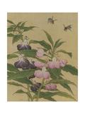 Bees and Garden Blossoms Giclée-Premiumdruck
