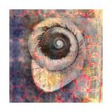 Seashell-Snail Print by Elena Ray