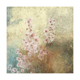 Cherry Blossom Abstract II Poster by Rick Novak
