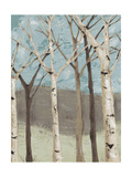 Blue Birches I Premium Giclee Print by Jade Reynolds
