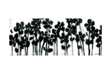 Black Flowers on White II Prints by Jr., Norman Wyatt