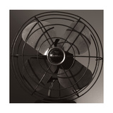 Vintage Fan Study IV Photographic Print by Renee W. Stramel