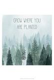Little Grower II Poster by Grace Popp