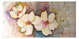Horizontal Flores VII Print by Leticia Herrera