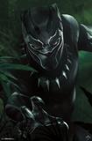 Black Panther - T'Challa Prints