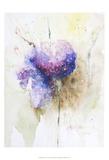 Hortenzzia I Prints by Leticia Herrera