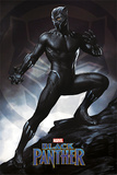 Black Panther - Stance Plakater