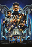 Black Panther Posters