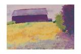 Wheat Field Prints by Mike Kelly