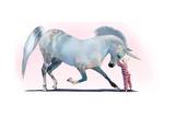 Unicorn Kiss Posters por Nancy Tillman