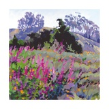 Spring Haze, Eucalyptus on the Ridge Affischer av Marcia Burtt