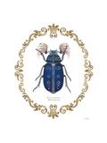 Adorning Coleoptera III Affiche par James Wiens