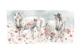 Wild Horses III Kunstdrucke von Lisa Audit