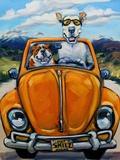 Got Skills Will Travel Kunstdruck von Connie R. Townsend