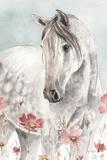 Wild Horses I Crop Kunst af Lisa Audit