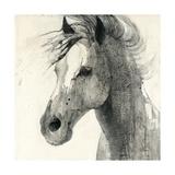 In the Wind II Prints by Albena Hristova
