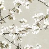 Confetti Bloom II Reproduction procédé giclée par Tania Bello