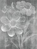 Chalky Bouquet Impressão giclée por Maria Mendez