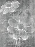 Chalky Blooms Impressão giclée por Maria Mendez