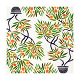 Orange Bonsai Orange Pattern Giclee Print