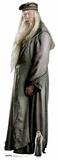 Albus Dumbledore - Mini Cutout Included Silhouettes découpées en carton