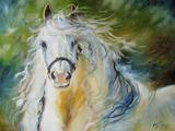 White Cloud the Andlusian Stallion Posters av Marcia Baldwin