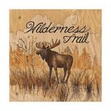 Wilderness Trail Láminas por Arnie Fisk