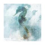 Coastal Mist Seahorse Poster tekijänä Ken Roko