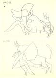 El Toro (1) Litografia por Pablo Picasso