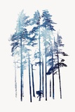 Winter Wolf Prints by Robert Farkas