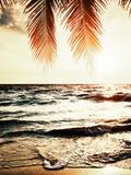 Night Beach Lámina fotográfica por  Tai Prints