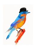 Lord Bird Prints by Robert Farkas