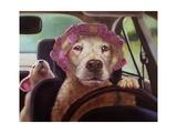 Mommy Chauffeur Prints by Lucia Heffernan