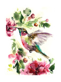 Hummingbird Joy Posters by Sophia Rodionov