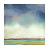 Tidal Pools II Giclee Print by Suzanne Nicoll