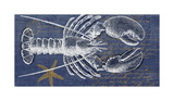 Denim Washed Lobster Giclee Print by Suzanne Nicoll