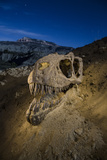 A Mold of a Teratophoneus Skull Recovered from the Kaiparowits Formation Fotografisk tryk af Cory Richards